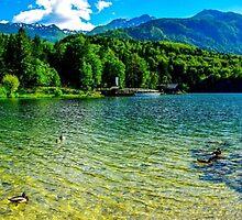 Panoramic of Lake Bohinj in Slovenia by Luke Farmer