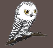 Snowy Owl by Kristel Mallet