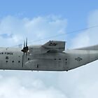 U.S. Airforce C-130E by Walter Colvin