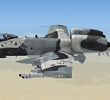 The Fairchild Republic A-10 Thunderbolt II by Walter Colvin