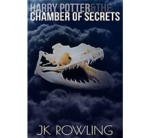 Harry Potter and the Chamber of Secrets Art Photographic Print