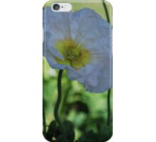 White Poppy By Lorraine McCarthy iPhone Case/Skin