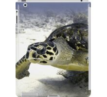 Caribbean Sea Turtle iPad Case/Skin