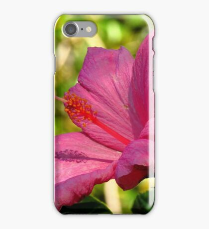Beauty Of The Garden iPhone Case/Skin