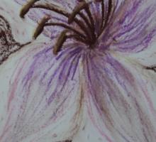 Stargazer Lily in Pastel Sticker