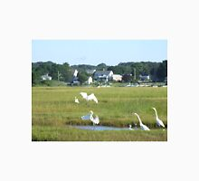 egrets landing in misquamicut, ri Unisex T-Shirt