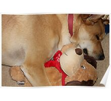 Thayne Sleeping with His Teddy Dog Poster