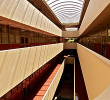 Marin County Civic Center, Frank Lloyd Wright Architect by Scott Johnson