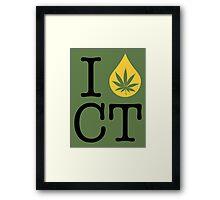 I Dab CT (Connecticut) Framed Print