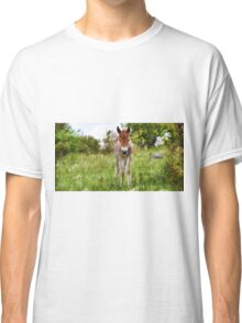 Little Curious One  Classic T-Shirt