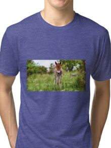 Little Curious One  Tri-blend T-Shirt