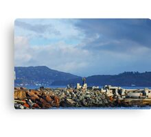 Giving Thanks to Mother Earth Canvas Print