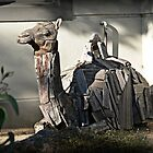 Camel's Recycled by Larry Lingard-Davis