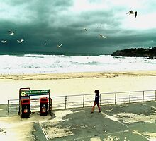Bondi Birds by ShotsOfLove