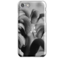 TOP VIEW OF A PRICKLY CACTUS iPhone Case/Skin