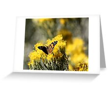 Butterfly Kisses 2 Greeting Card