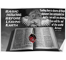 BASIC INSTRUCTIONS (BIBLICAL) Poster