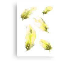 Citrus Feathers Canvas Print