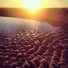 Casuarina Beach 0604 by Michael Kienhuis