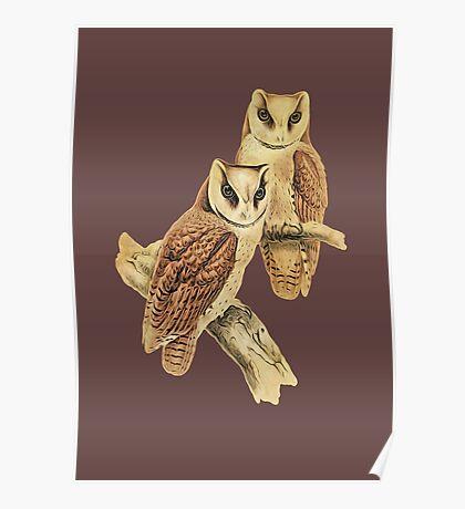 Magical Owls II Poster
