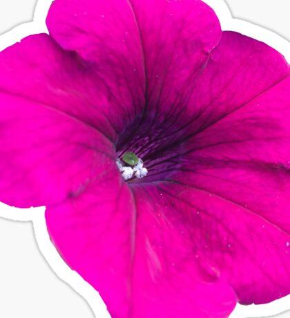 Flower Cutout Sticker
