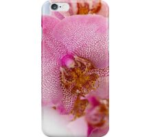 orchid bloom iPhone Case/Skin