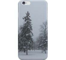 A Cold December Morning - Snowstorm in the Park iPhone Case/Skin