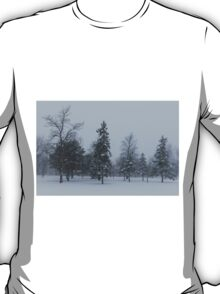 A Cold December Morning - Snowstorm in the Park T-Shirt