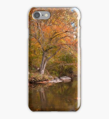 Reflecting on Fall iPhone Case/Skin