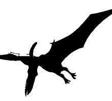 Pterodactyl Silhouette by kwg2200