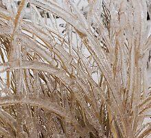 Icy Grass Sculptures by Georgia Mizuleva