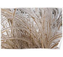Icy Grass Sculptures Poster