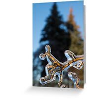Mother Nature's Christmas Decorations - Encapsulated Branch Greeting Card
