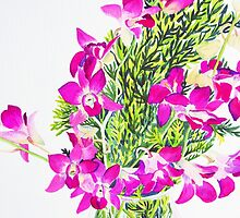 Singapore Orchids by marlene veronique holdsworth