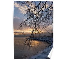 A Curtain of Frozen Branches - Ice Storm Sunrise Poster