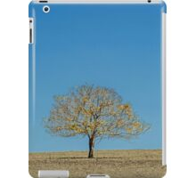 The Yellow Tree - Boonah Qld Australia iPad Case/Skin