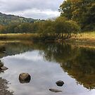 The River Brathay by Jamie  Green