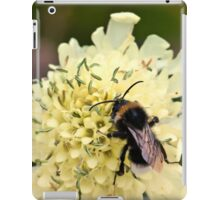 How to Bee Happy iPad Case/Skin