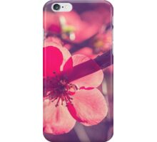 Let your light shine through iPhone Case/Skin