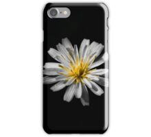 Hints of color iPhone Case/Skin