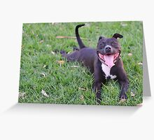 Smiley mutt Greeting Card