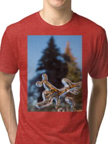 Mother Nature's Christmas Decorations - Encapsulated Branch Tri-blend T-Shirt