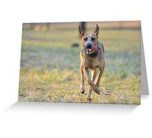 Tonguey runner! Greeting Card