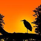 Heron Silhouette by Ellesscee