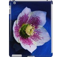 Hellebore Flower Head iPad Case/Skin