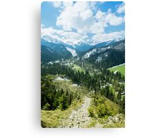 The Tatra Mountains in Poland. Mountains landscape with green forest and snowy peaks. Summer time Canvas Print