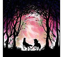 Dance of Unicorns Photographic Print