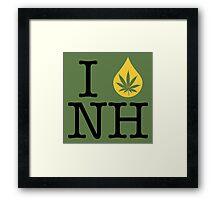 I Dab NH (New Hampshire) Framed Print