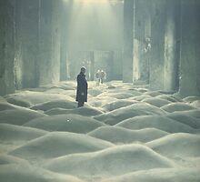 Andrei Tarkovsky - Stalker by toopleb