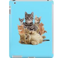 Cat Pile iPad Case/Skin
